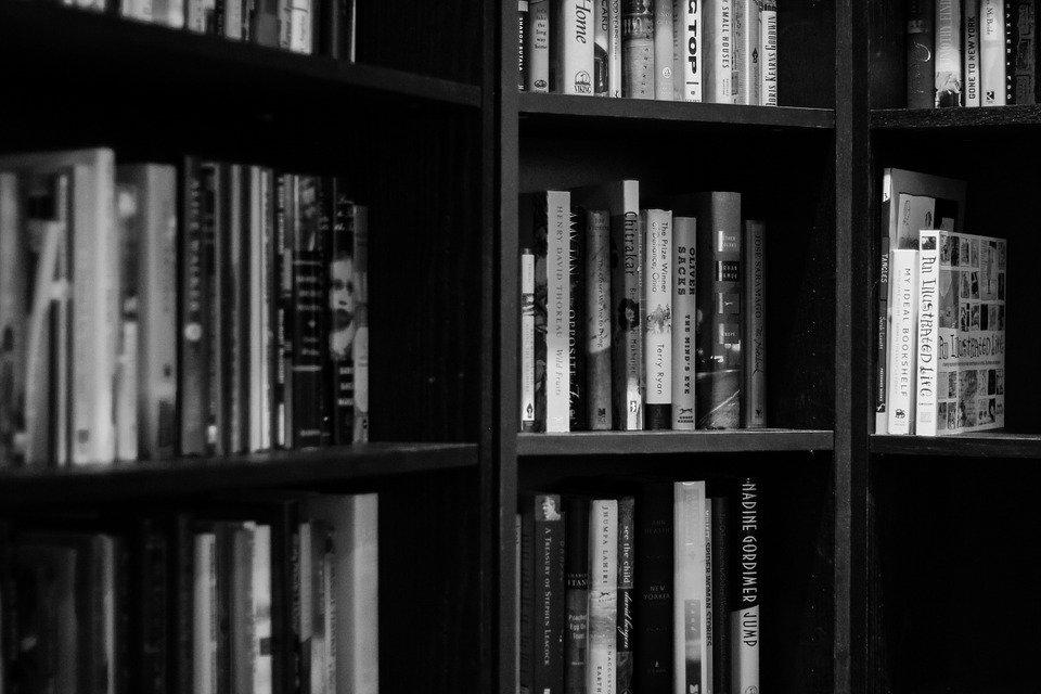 Bibliothèque de livres de webmarketing digital